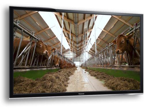 Cowporation Limousins bedrijfsfilm